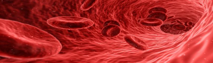 Fluxo sanguíneo