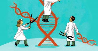 Você sabe o que é Genética do Desenvolvimento?